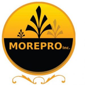 more pro inc brick paver and concrete specialists logo