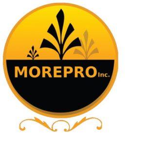 More Pro Inc brick and concrete services